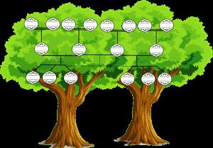 ensemble d'arbres généalogiques à imprimer