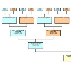 exemple d'arbres généalogiques