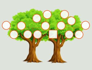 Modele D Arbre Genealogique A Imprimer Et Conseils D Impression